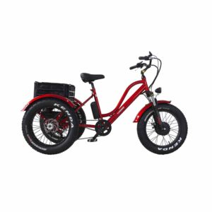 Daymak Florence Fat Tire 500 Watt Electric Bicycle